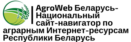 https://static.tildacdn.com/tild3237-3466-4166-a139-343730316535/b82775bb-7deb-4dbb-a