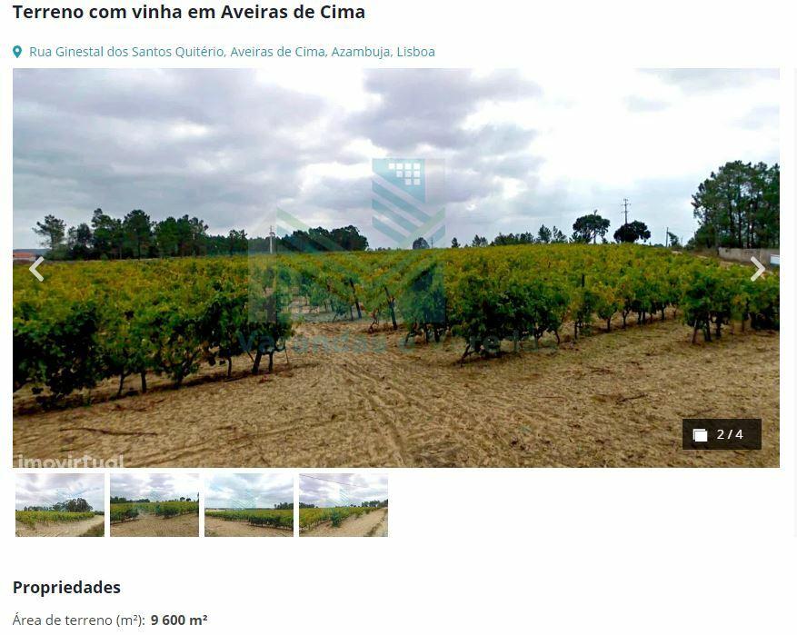 виноградник азамбужа