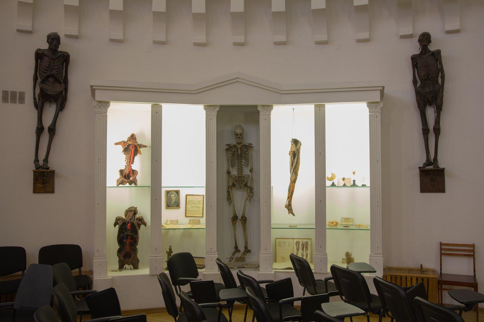 казань анатомический музей театр фото семье достатка любви