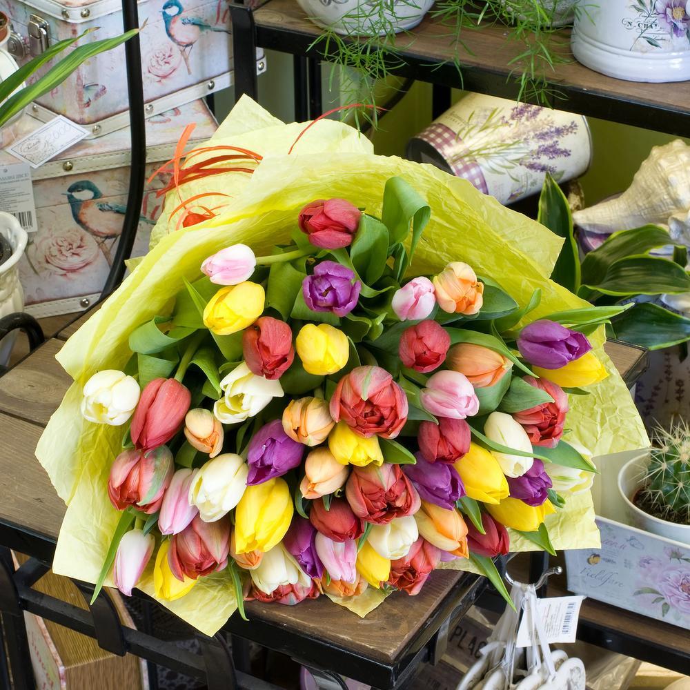 отдыха располагает каталог тюльпанов и роз фото эта