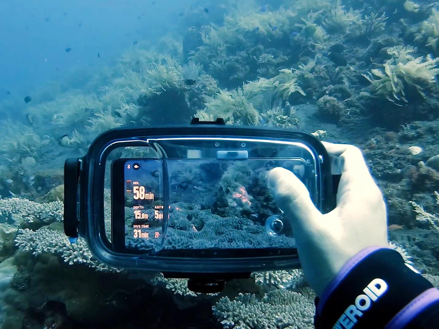 нашли подходящего смартфон который фотографирует под водой сумерках вспыхнут