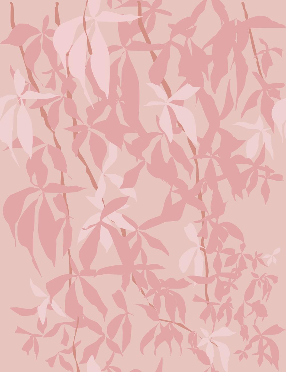 koivikko wallpaper vine, pink