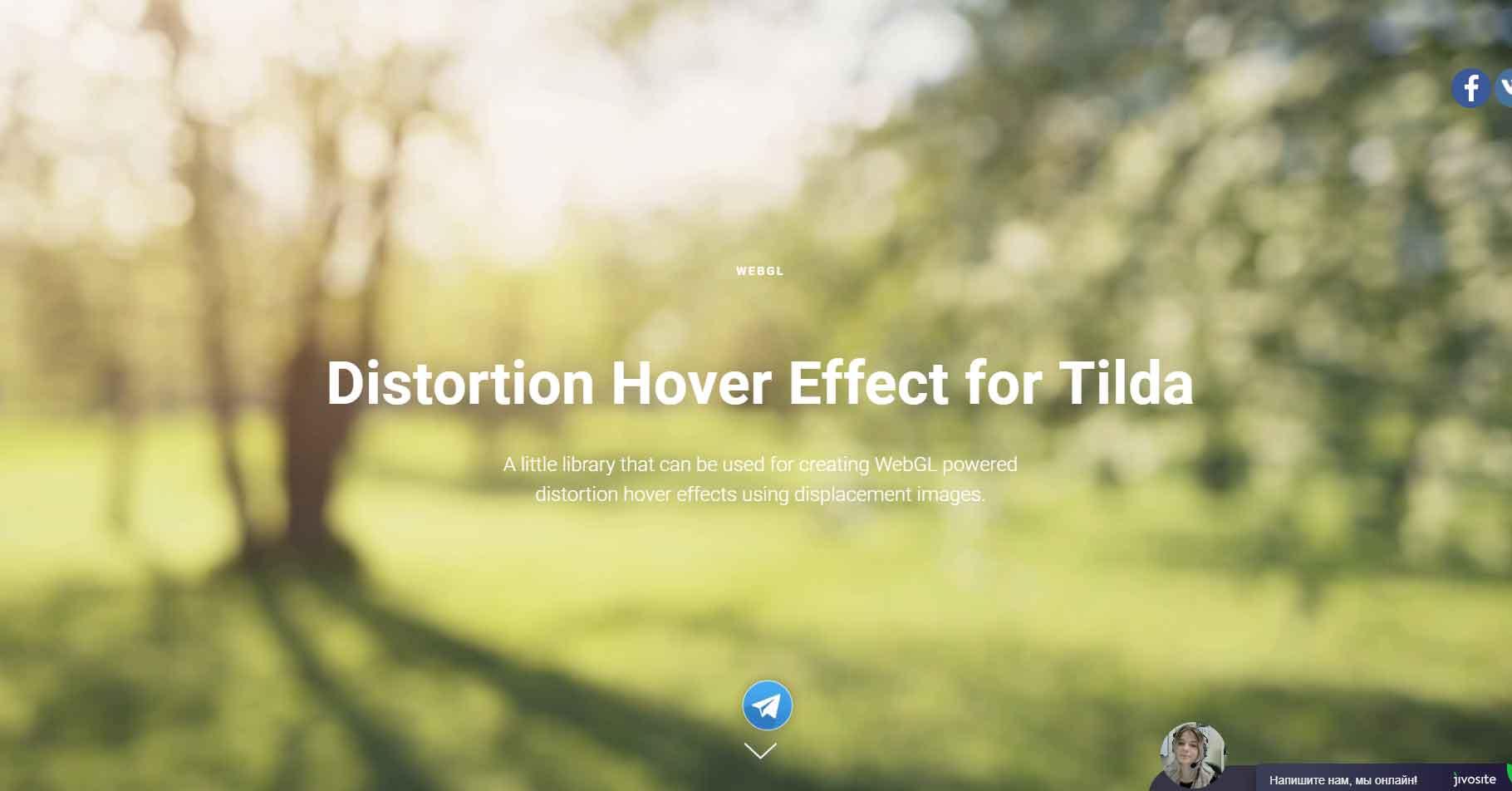 Как сделать Distortion Hover Effect для изображений в Tilda