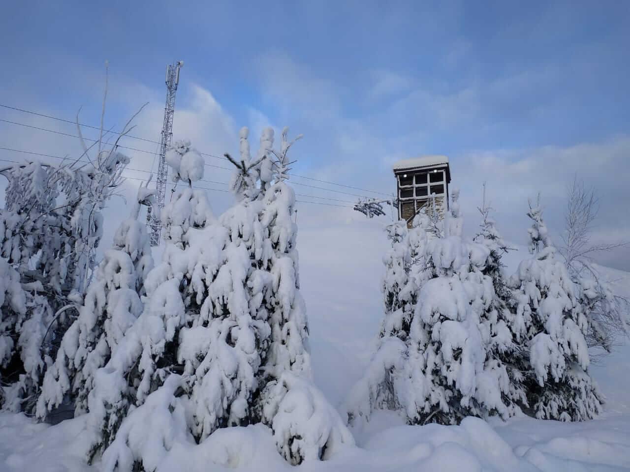 Снежный Ленобласть