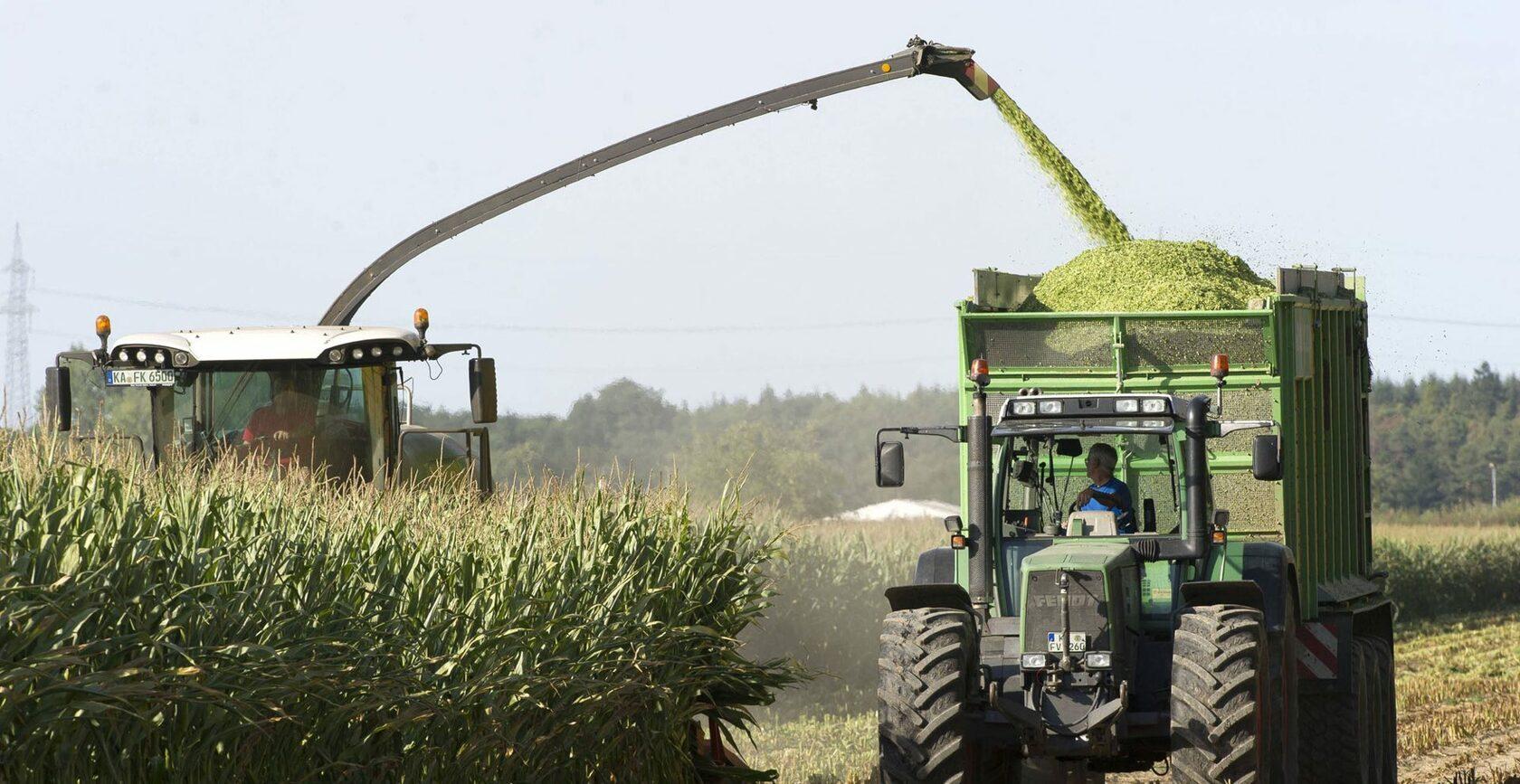 заготовка силоса, кукурузный силос, купить нву-3, насос дозатор