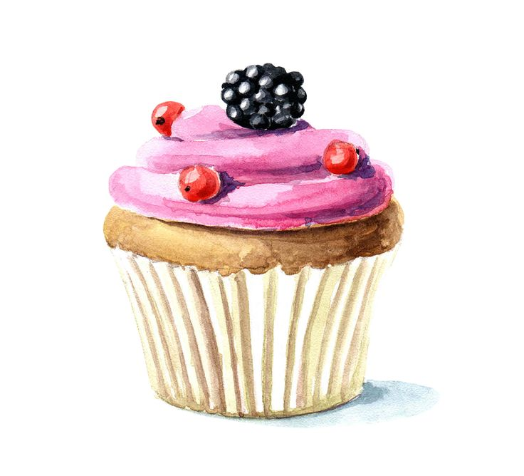 cupcake png clipart cupcake drawing pastry pastel - 736×668
