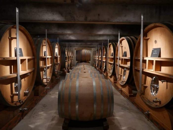 Jacquesson cellar