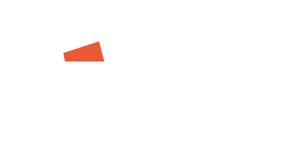 NETSOL GROUP