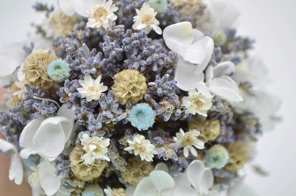 цветы лаванды