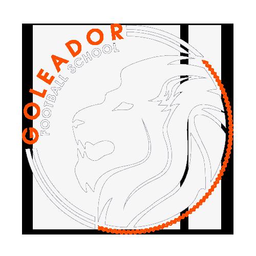 Футбольная школа Голеадор