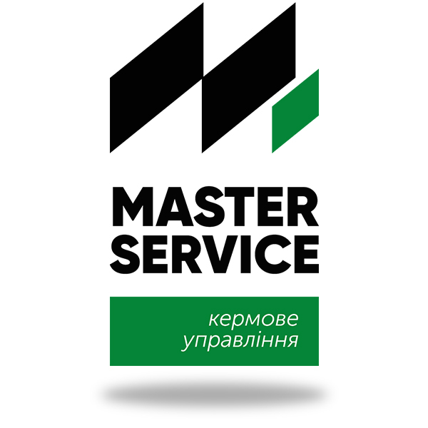 Логотип Master Sevice кермове управління