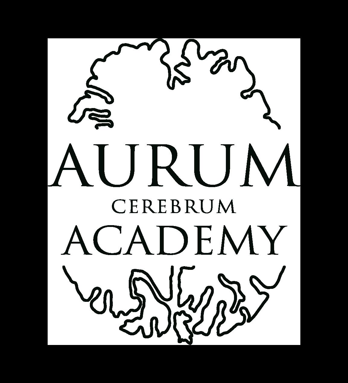 Академия АУРУМ