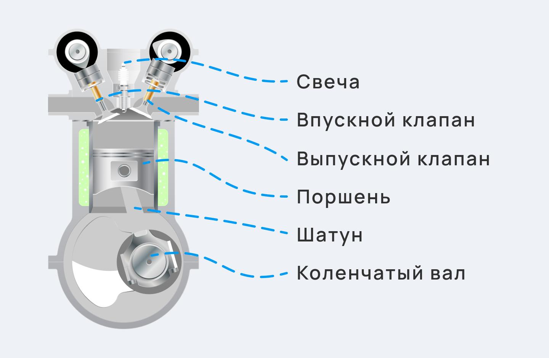 цилиндр в разрезе