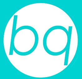 BQ CONSULTING LLC