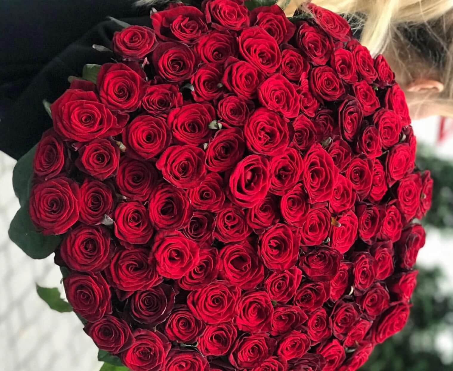 Роз бордовые букеты 101 роза