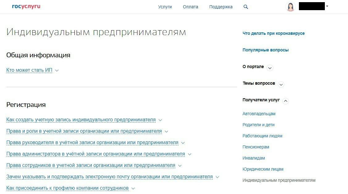 Общая информация по ип на портале госуслуги