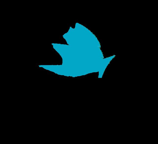 логотипы аудиторских фирм картинки объявления кызыле помогут