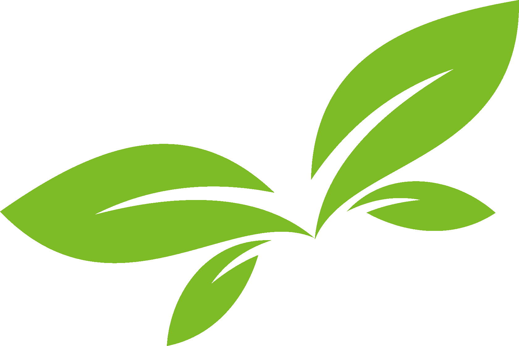 Органика