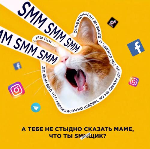 Рекламный креатив для SMM c котом на желтом фоне