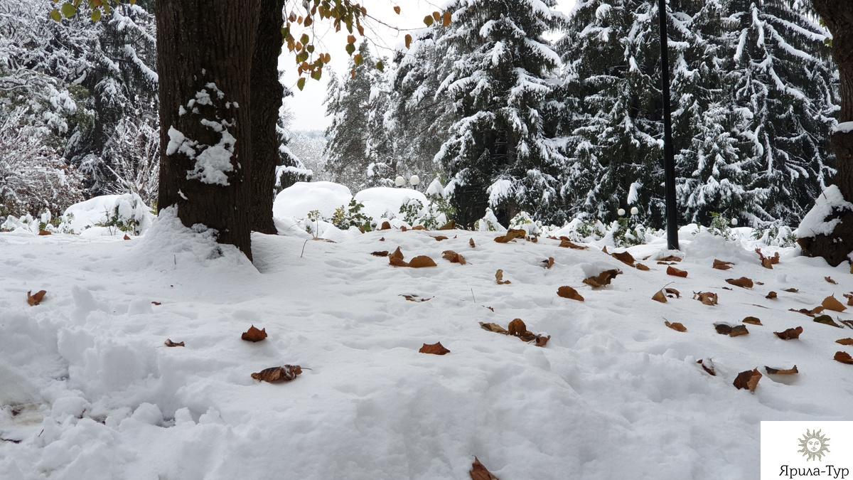 Осень в парке - 1