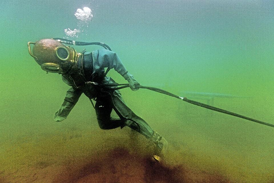 картинки водолаза и аквалангиста удивлён всем