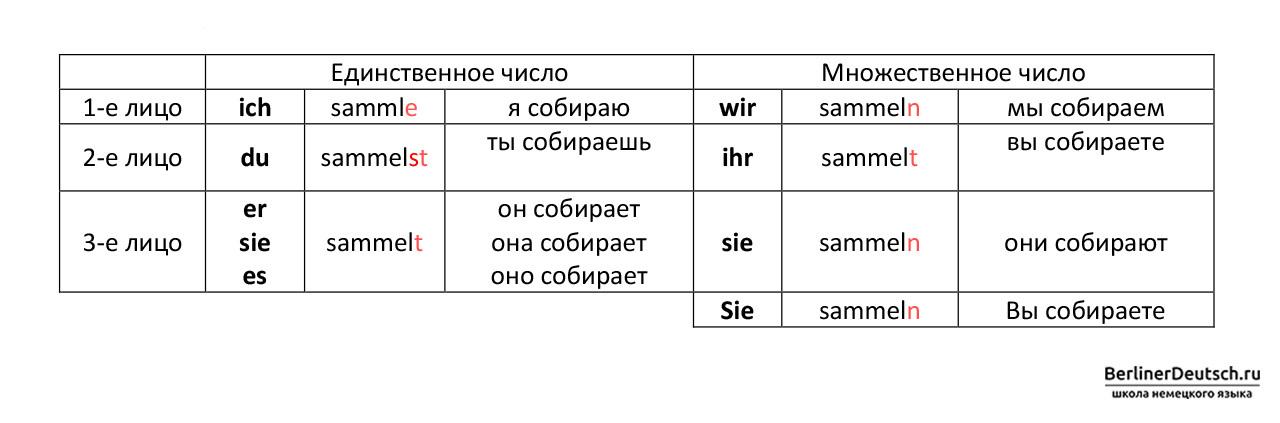 Пример спряжения глагола sammeln