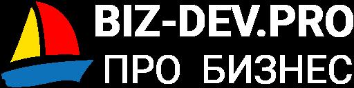 BIZ-DEV.PRO
