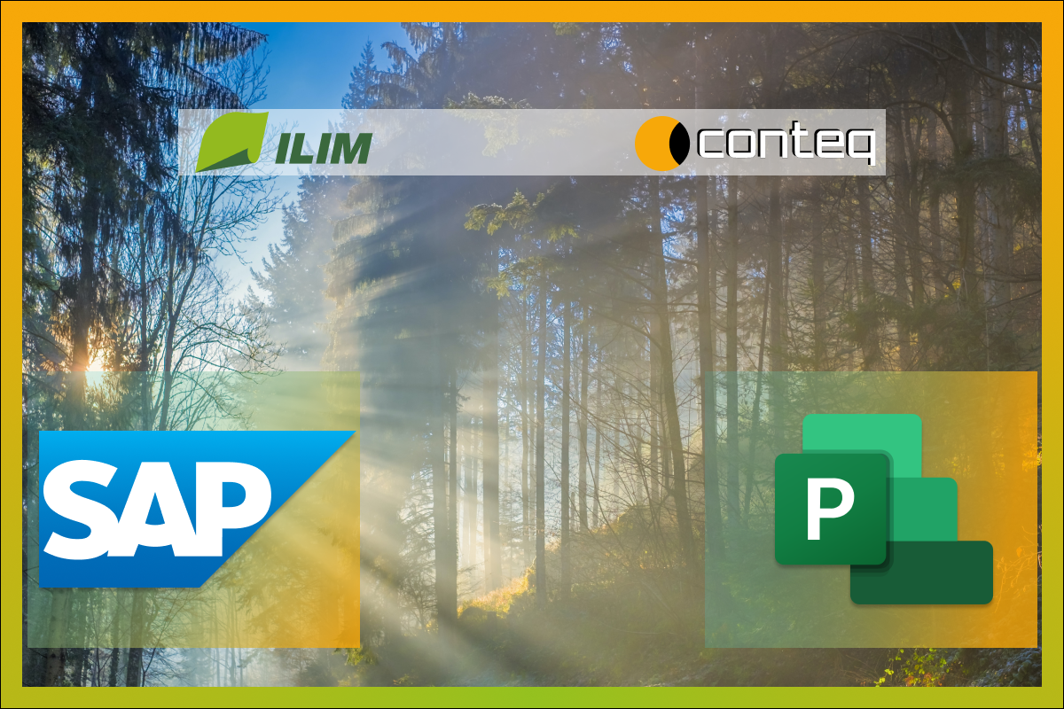 SAP, Microsoft Project