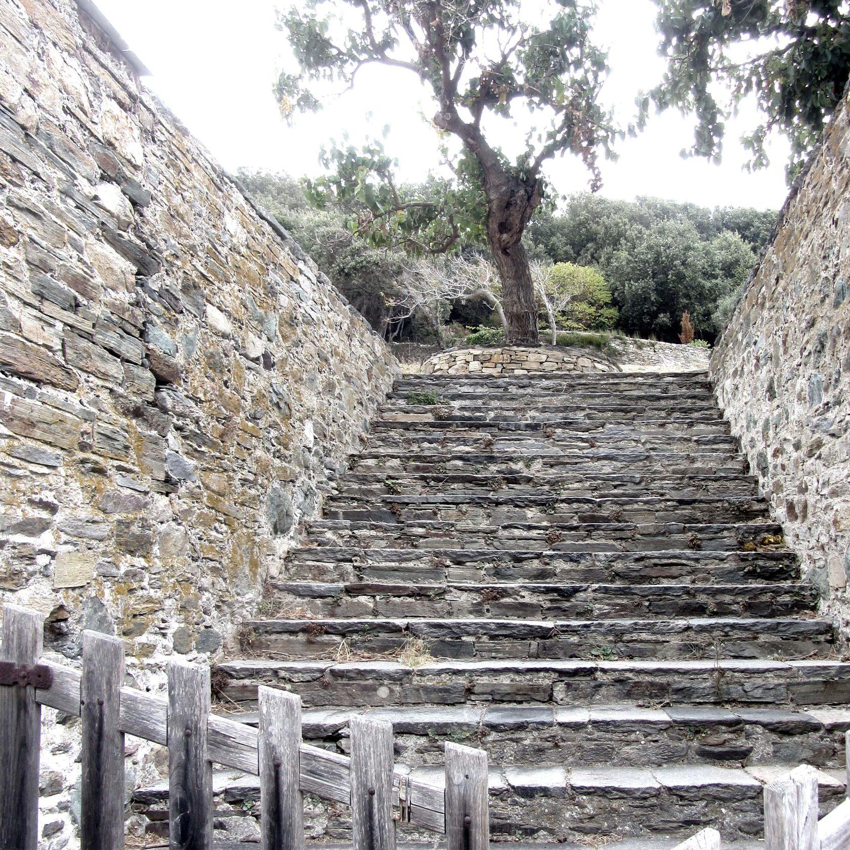 святая гора Афон, святой Силуан Афонский, святой Силуан