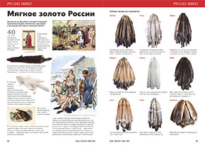 Россия – страна мехов. Ценные шкурки были у наших предков вместо денег