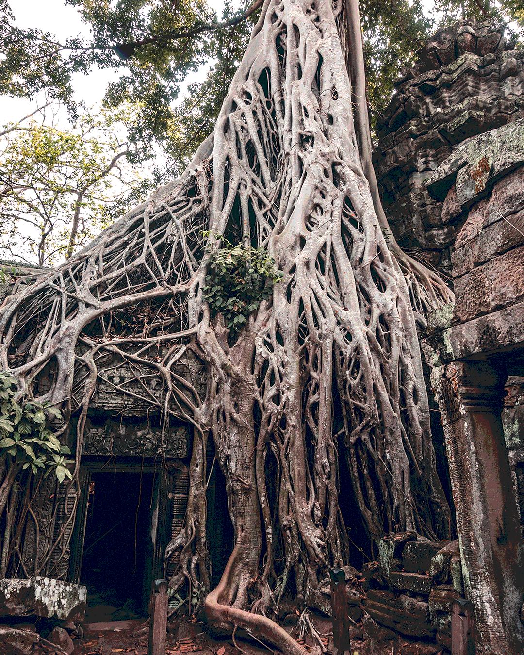 Foto van Instagram Simon Wijers, genomen op reis in Cambodja