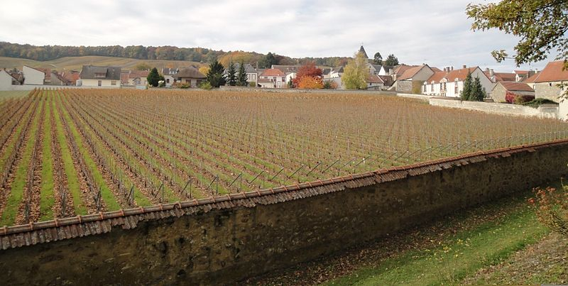 The Clos du Mesnil vineyard is located practically in the middle of the Grand Cru village of Le Mesnil-sur-Oger.