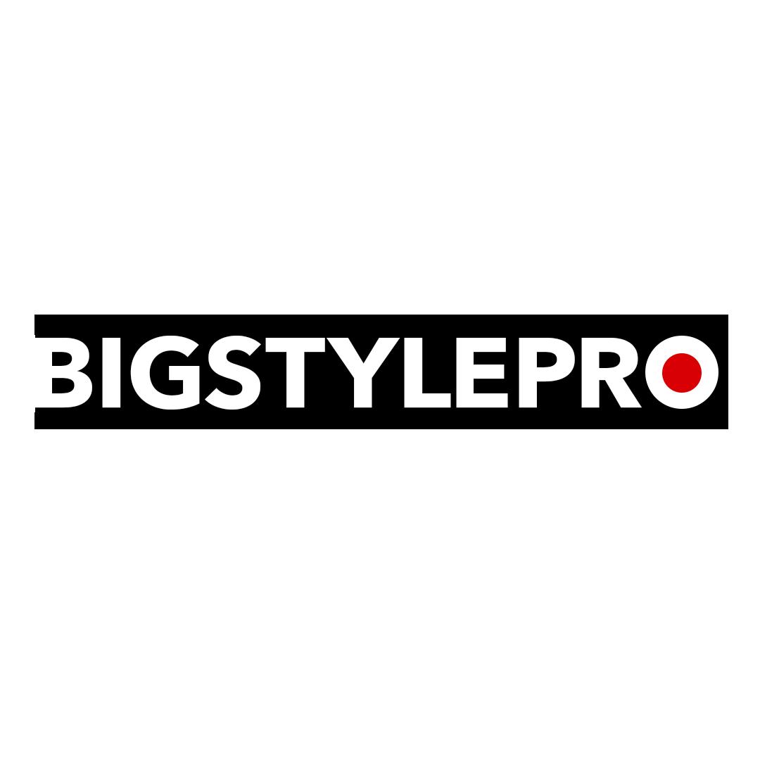 BIGSTYLEPRO