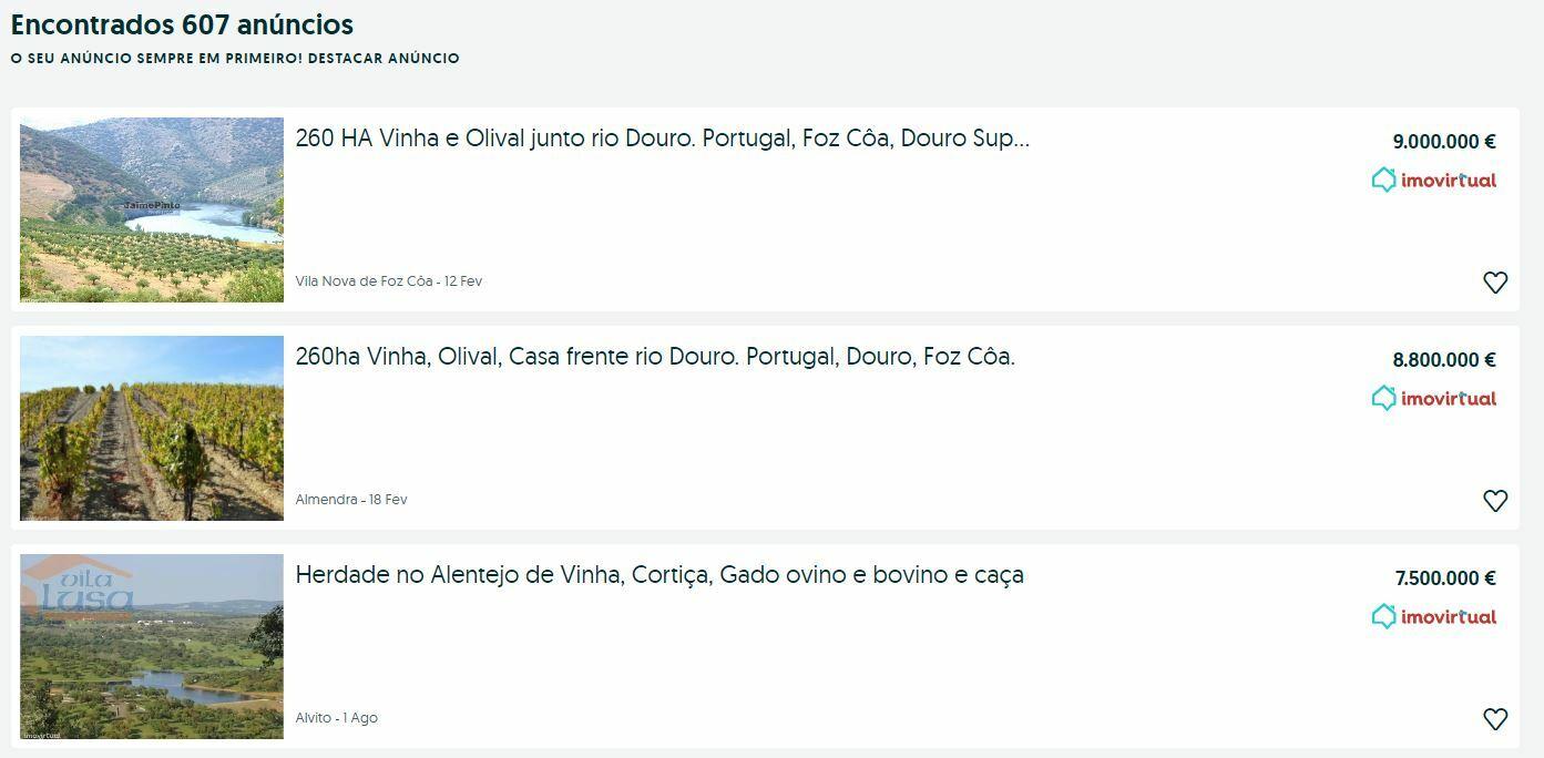 виноградники португалия