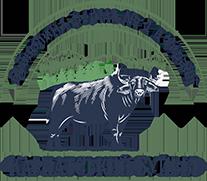 Карпатський буйвіл