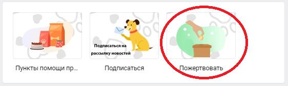 пожертвование приюту через группу Вконтакте