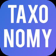 Taxonomy МСФО электронный формат