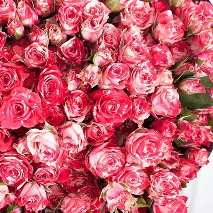 Букеты, купить розы недорого минск