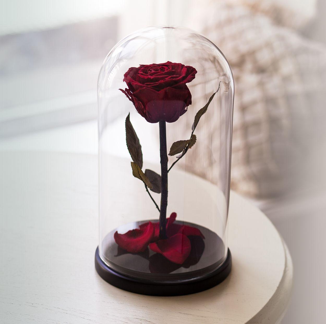 Покупаем розу в колбе