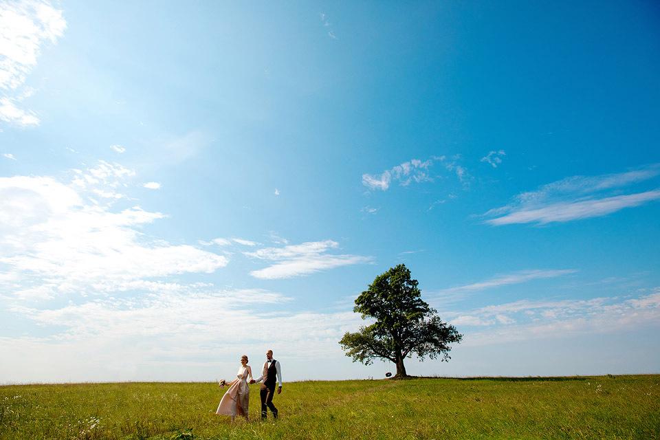 Фотосессия в поле, одиноко стоящее дерево