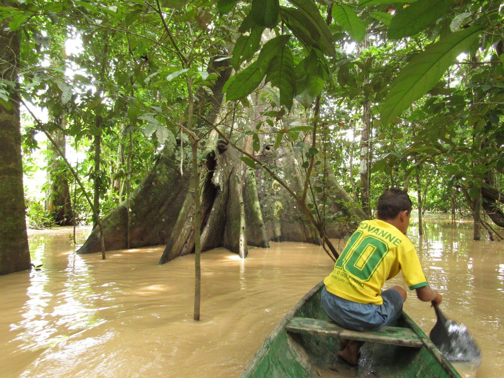 Extrativista do Vale do Juruá, no Acre, navega por igarapé em busca do cacau silvestre (Foto: SOS Amazônia)