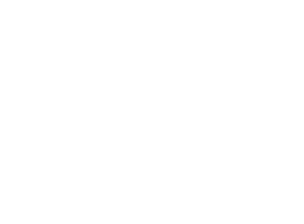 Sun Spirit Group