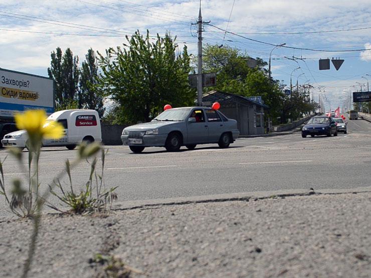 Автопробег Партии Шария 9 мая в Херсоне - фото