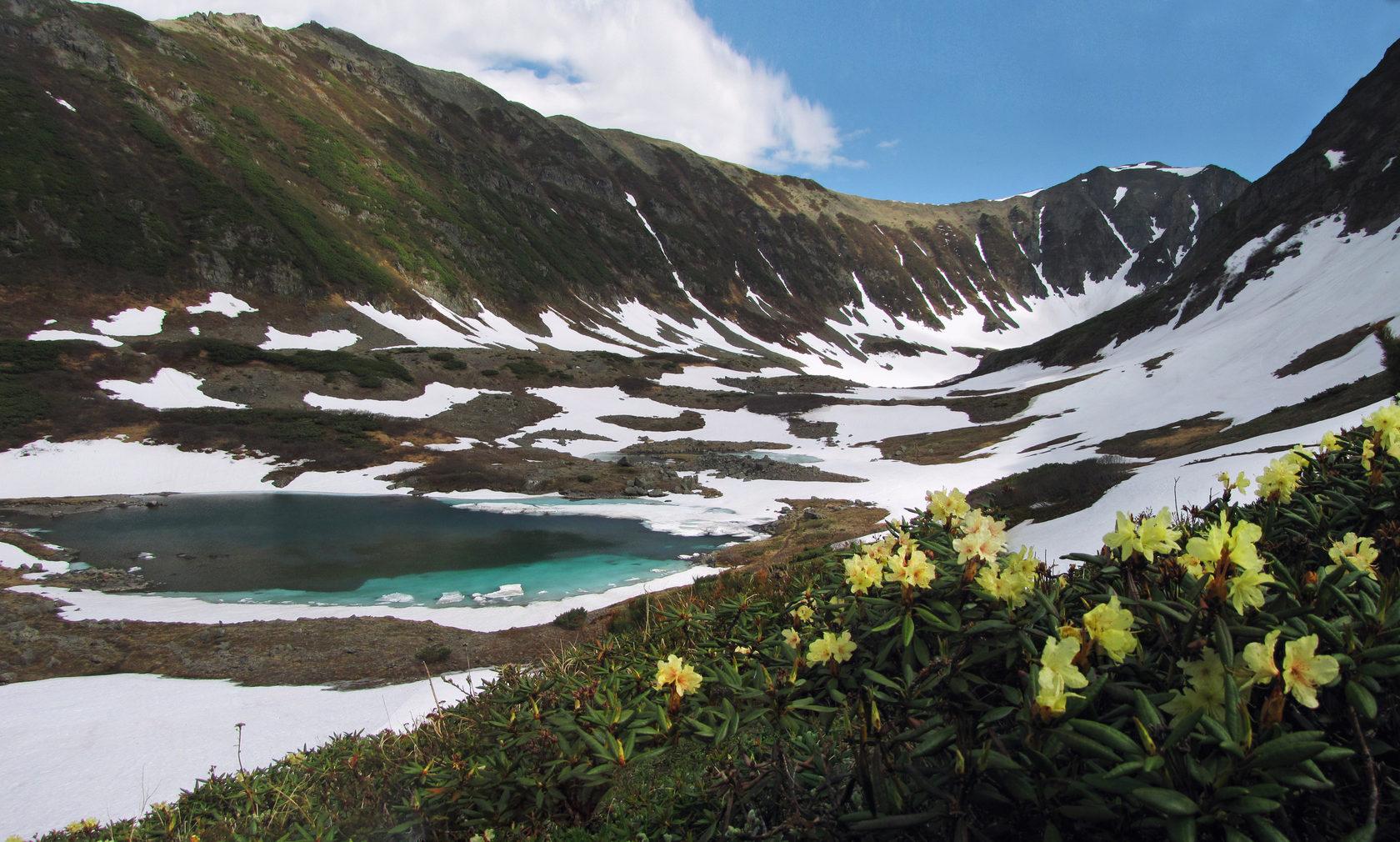 Жёлтые рододендроны на склонах горного цирка. Голубые озера.