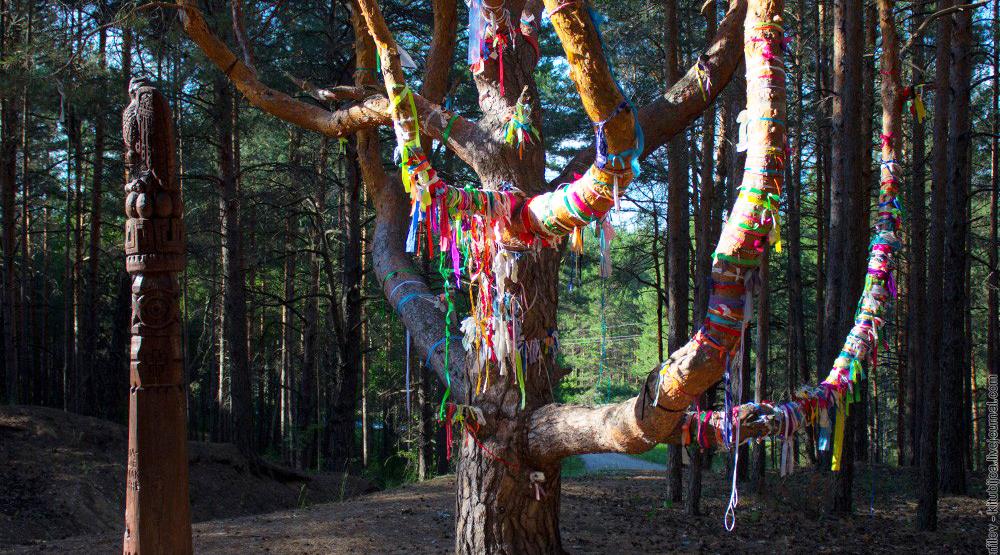 Древо жизни в парке «Сувар»