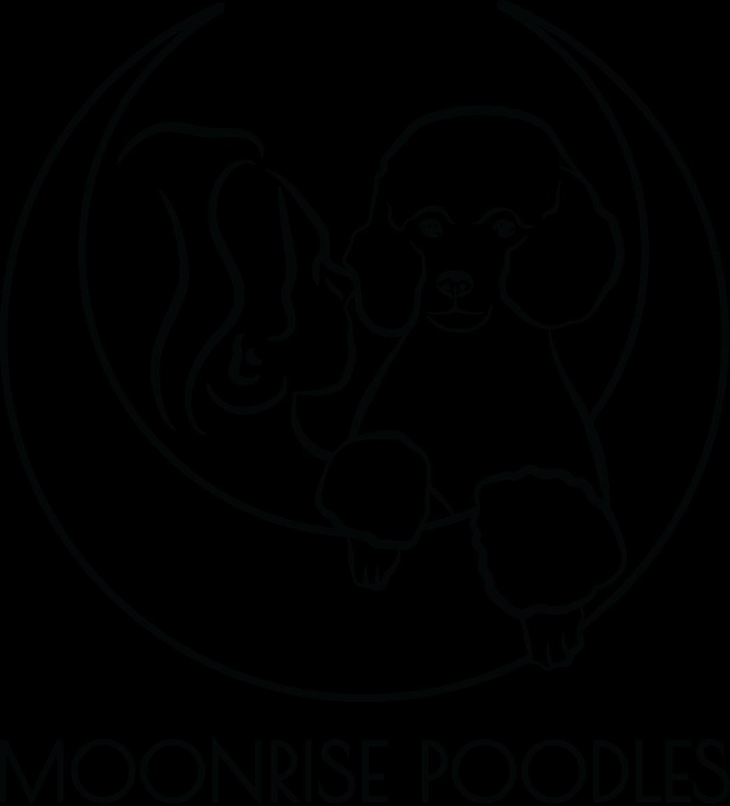 moonrisepoodles.com