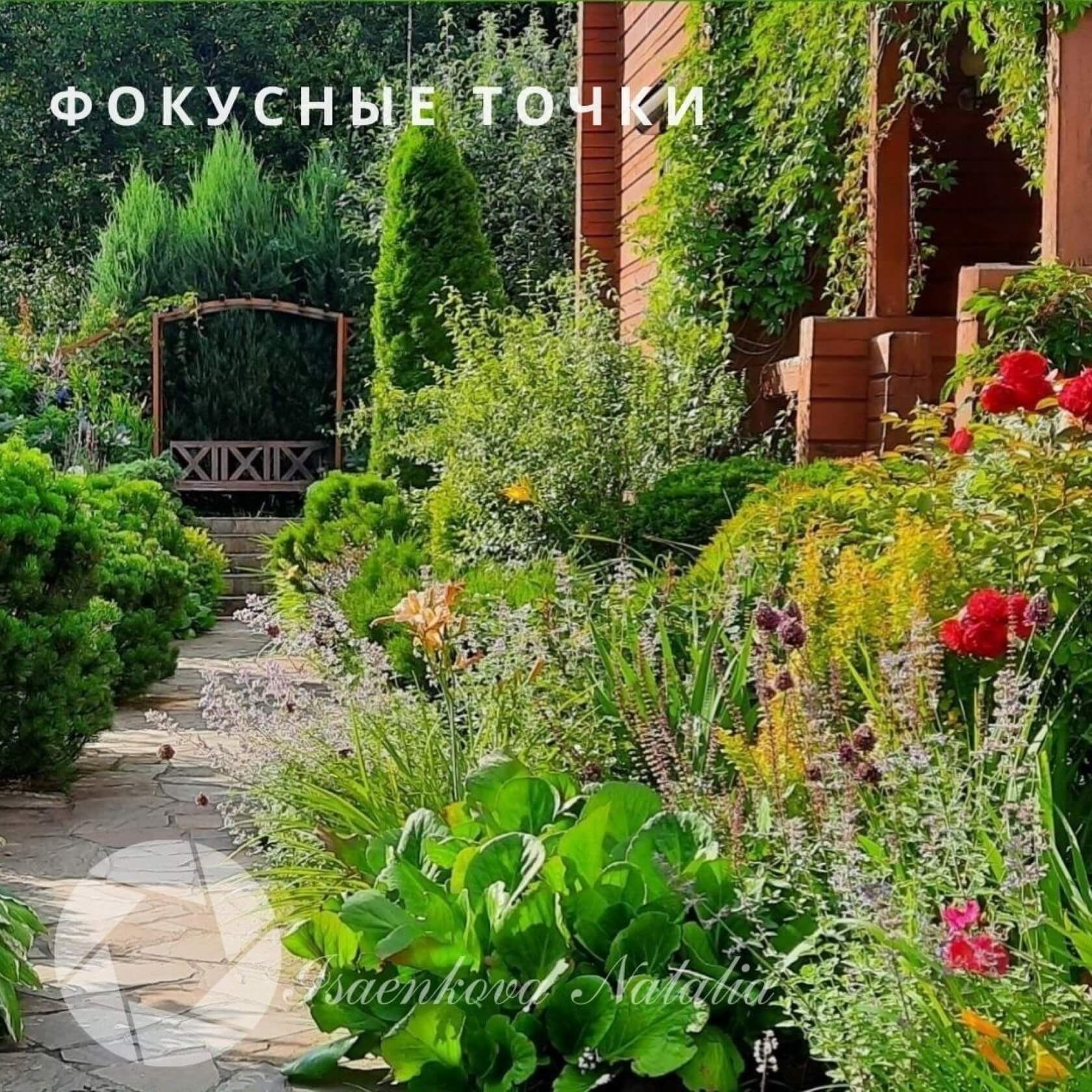 Сад Натальи Исаенковой