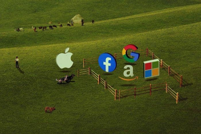 Обзор технологических компаний
