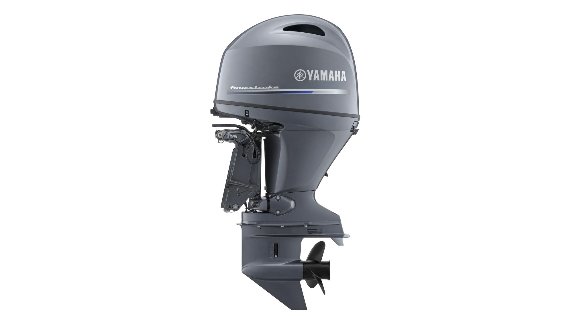 YAMAHA F100 DETL
