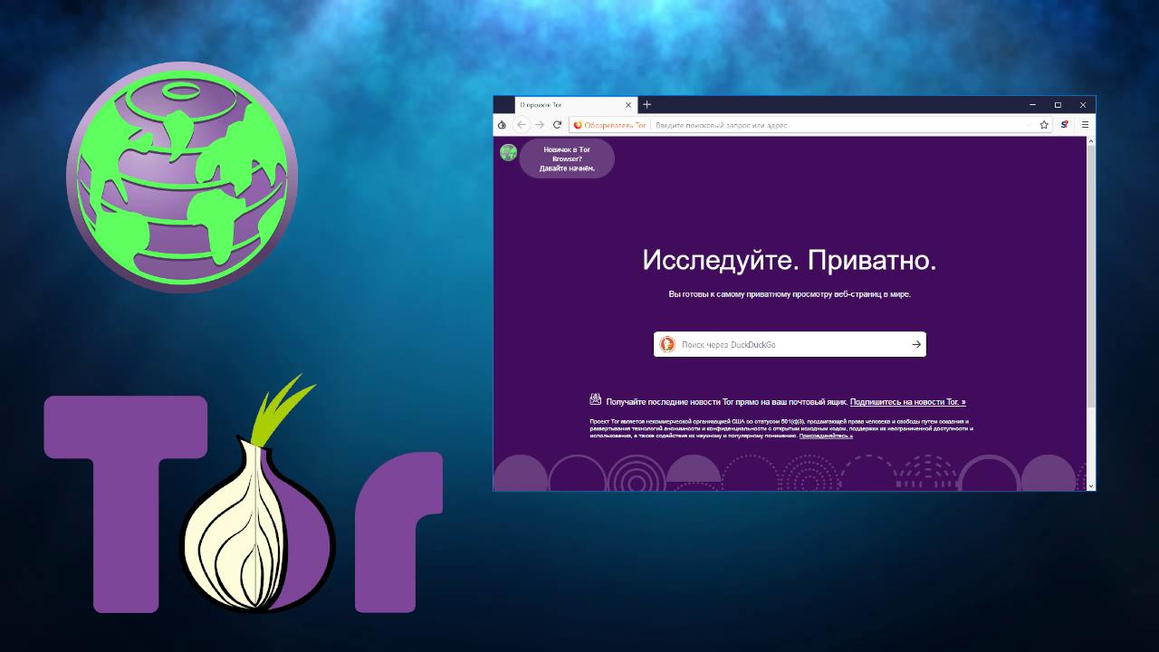 как скачать видео с tor browser